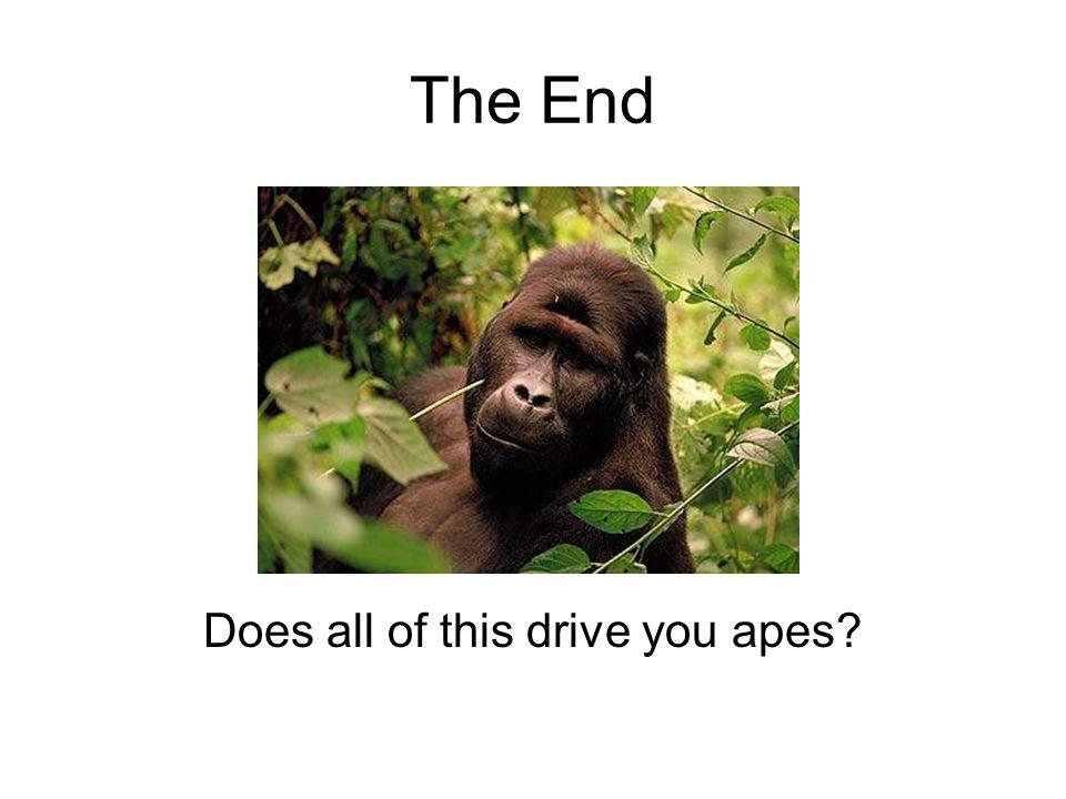 Does all of this drive you apes