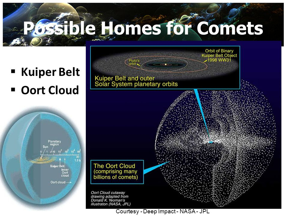 Possible Homes for Comets