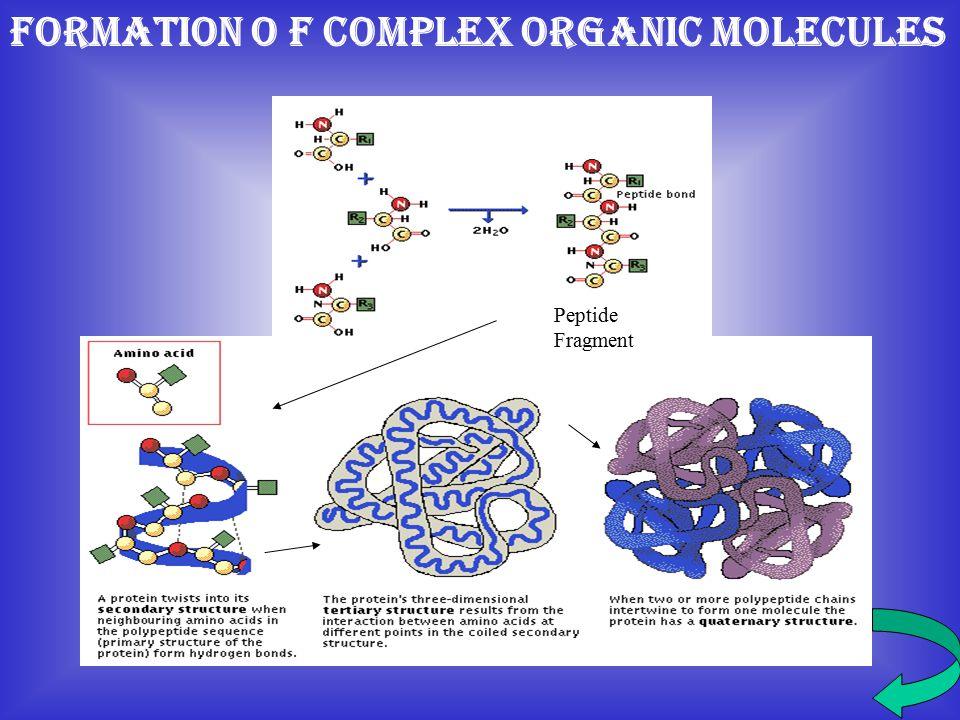 FORMATION O F COMPLEX ORGANIC MOLECULES