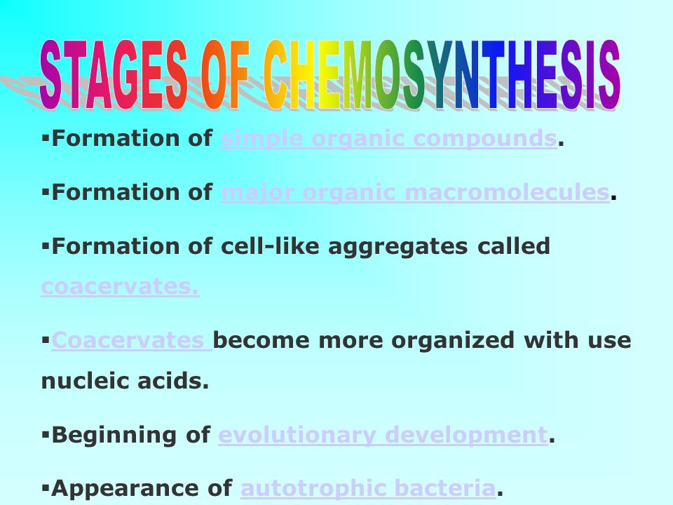 STAGES OF CHEMOSYNTHESIS