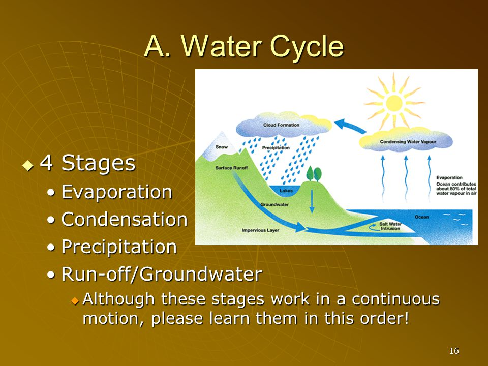 A. Water Cycle 4 Stages Evaporation Condensation Precipitation