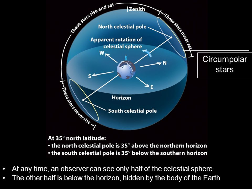 Circumpolar stars At any time, an observer can see only half of the celestial sphere.