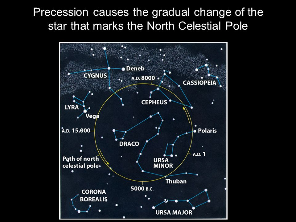 Precession causes the gradual change of the star that marks the North Celestial Pole