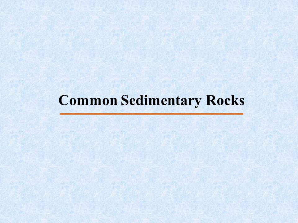 Common Sedimentary Rocks