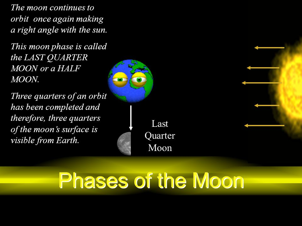 Phases of the Moon Last Quarter Moon
