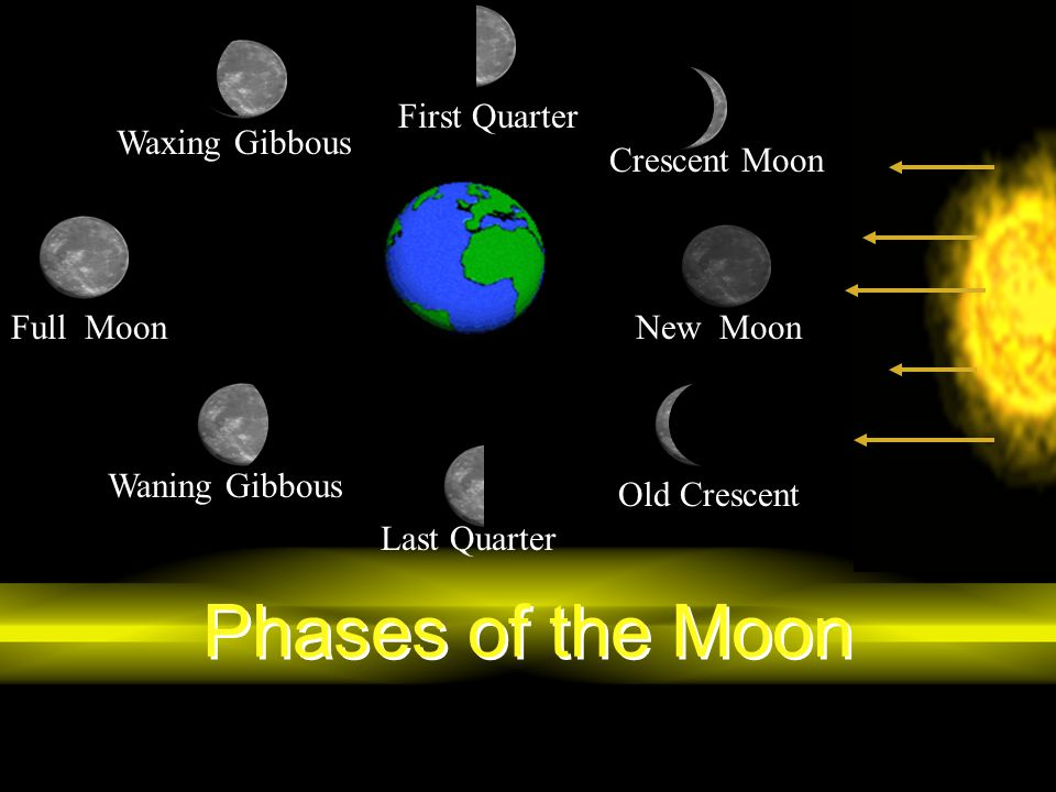 Phases of the Moon First Quarter Waxing Gibbous Crescent Moon