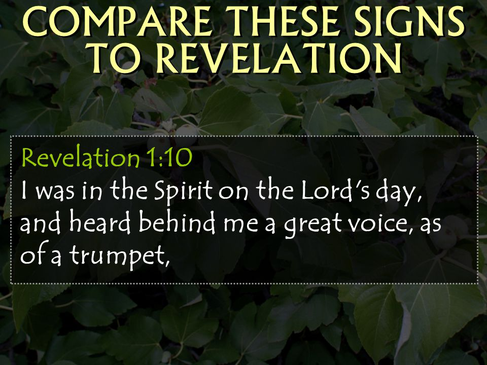 COMPARE THESE SIGNS TO REVELATION
