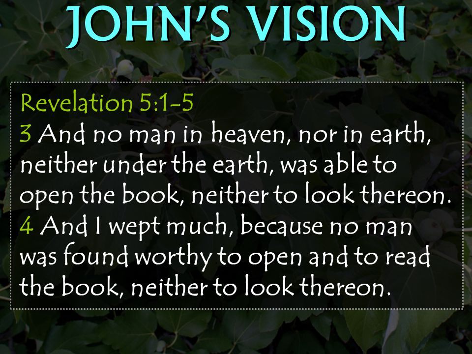 JOHN'S VISION Revelation 5:1-5 3 And no man in heaven, nor in earth, neither under the earth, was able to open the book, neither to look thereon.