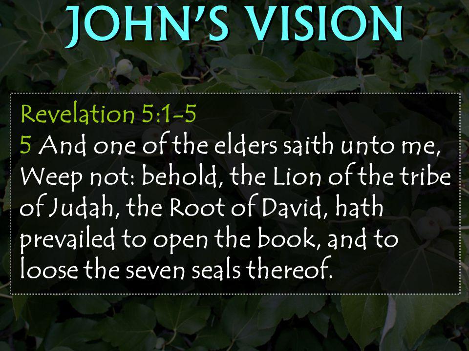 JOHN'S VISION