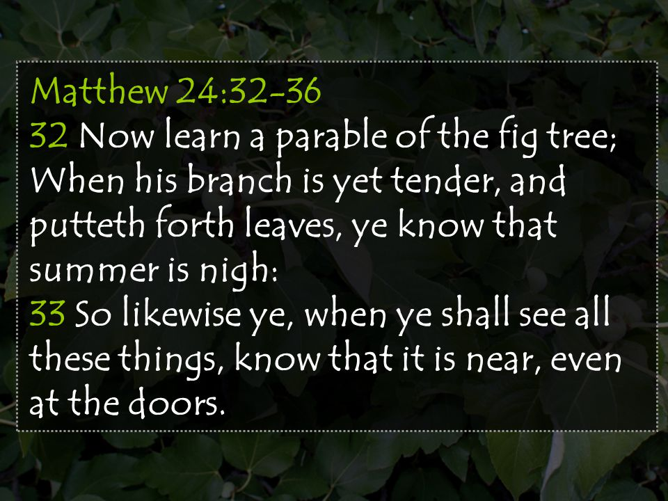 Matthew 24:32-36 32 Now learn a parable of the fig tree; When his branch is yet tender, and putteth forth leaves, ye know that summer is nigh: