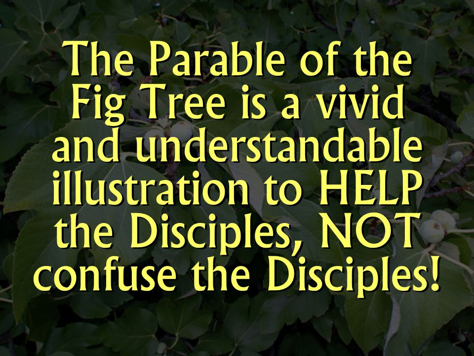 The Parable of the Fig Tree is a vivid and understandable illustration to HELP the Disciples, NOT confuse the Disciples!