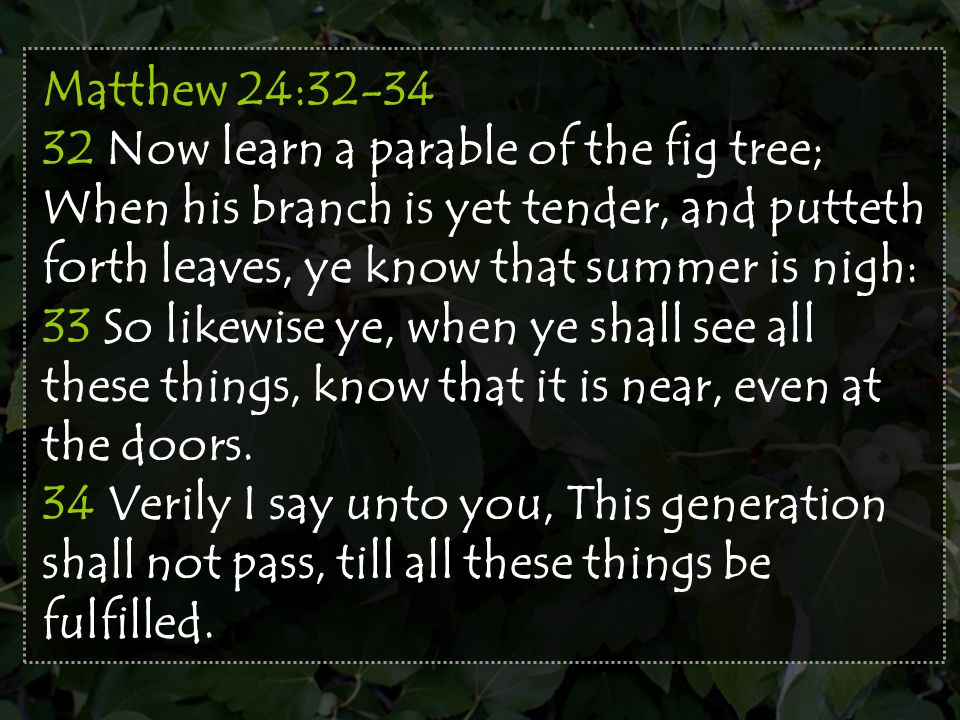 Matthew 24:32-34 32 Now learn a parable of the fig tree; When his branch is yet tender, and putteth forth leaves, ye know that summer is nigh: