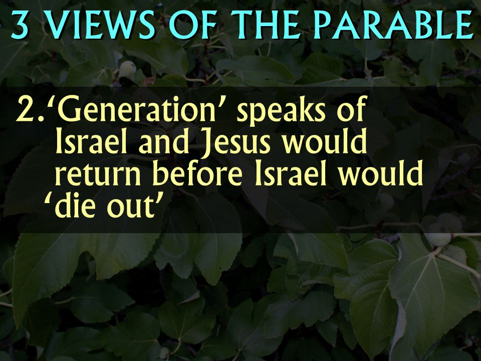 3 VIEWS OF THE PARABLE 'Generation' speaks of Israel and Jesus would return before Israel would 'die out'