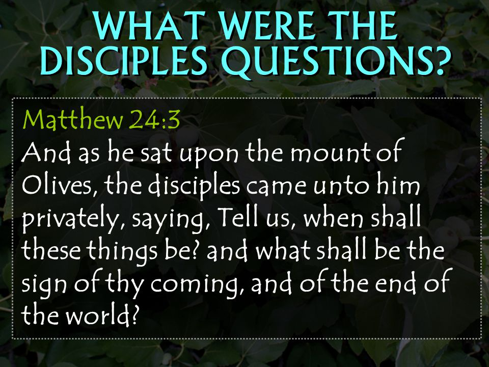 WHAT WERE THE DISCIPLES QUESTIONS