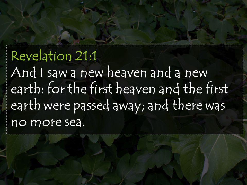 Revelation 21:1 And I saw a new heaven and a new earth: for the first heaven and the first earth were passed away; and there was no more sea.