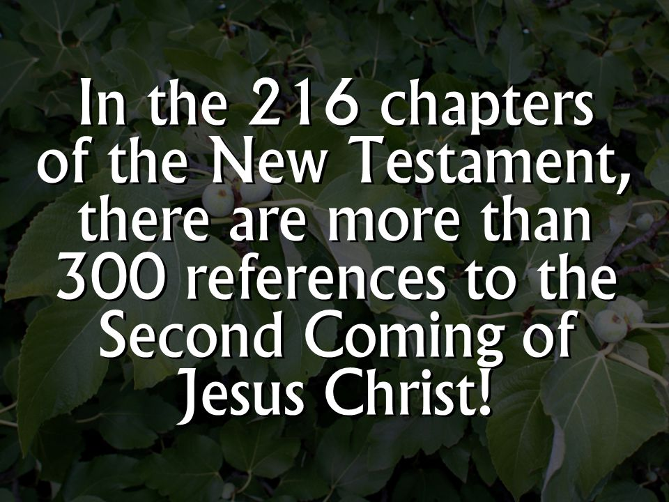 In the 216 chapters of the New Testament, there are more than 300 references to the Second Coming of Jesus Christ!