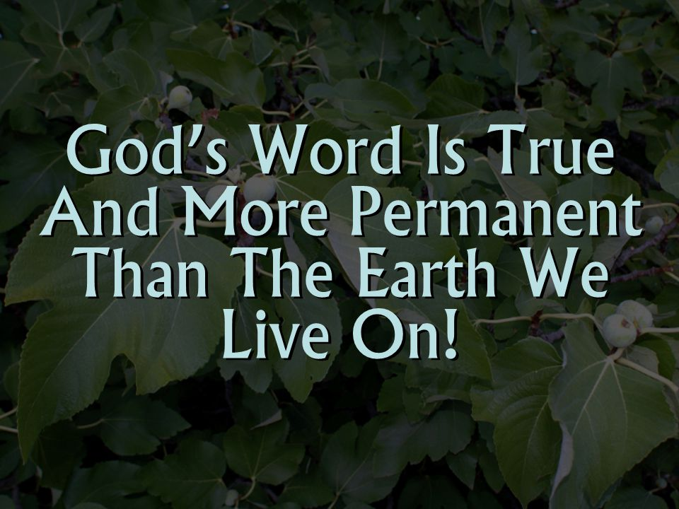 God's Word Is True And More Permanent Than The Earth We Live On!