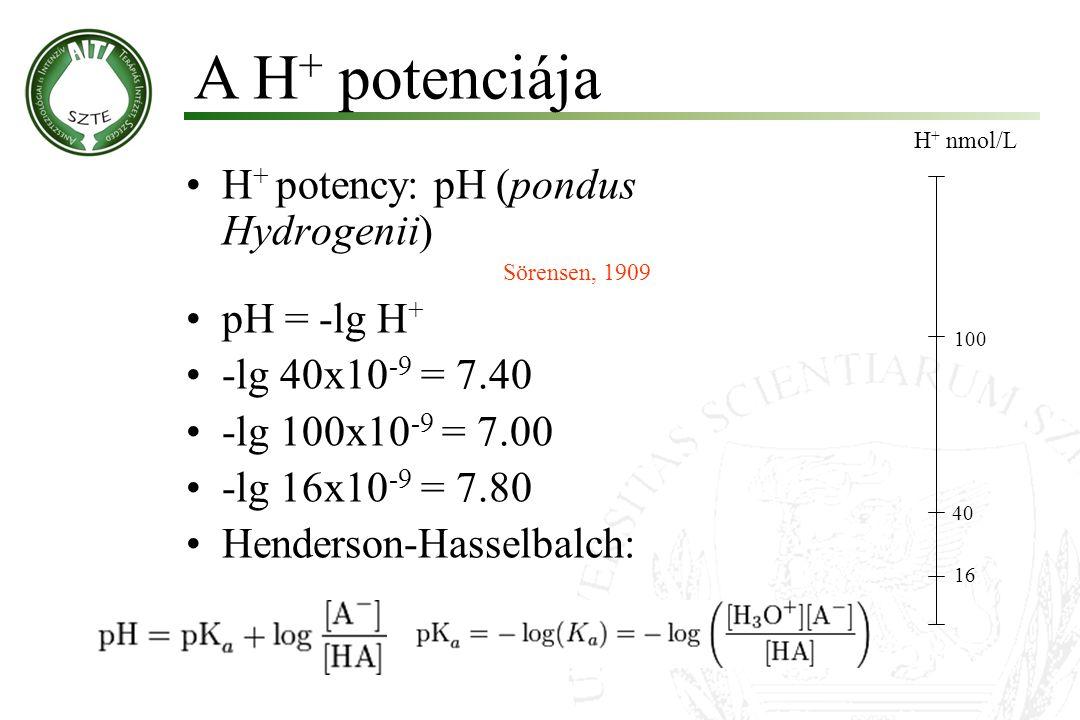 A H+ potenciája H+ potency: pH (pondus Hydrogenii) pH = -lg H+