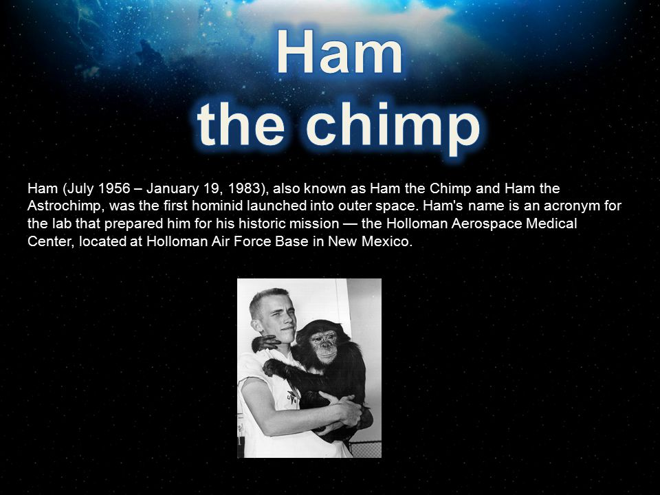 Ham the chimp.