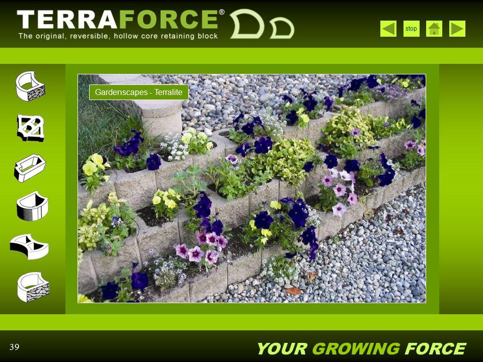 Gardenscapes - Terralite