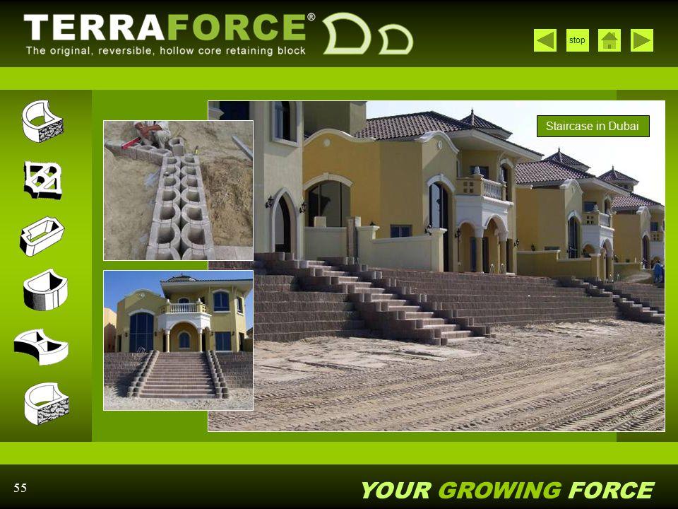Staircase in Dubai