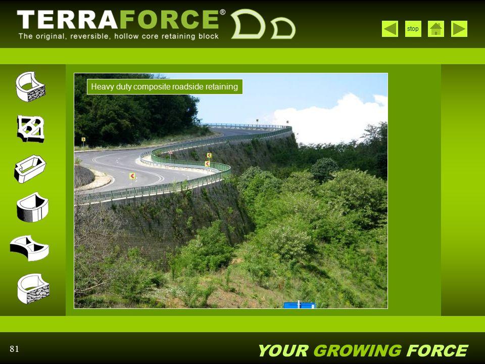 Heavy duty composite roadside retaining