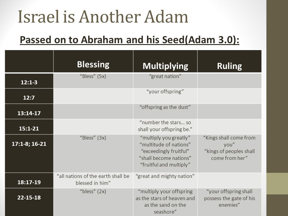 Israel is Another Adam Passed on to Abraham and his Seed(Adam 3.0):