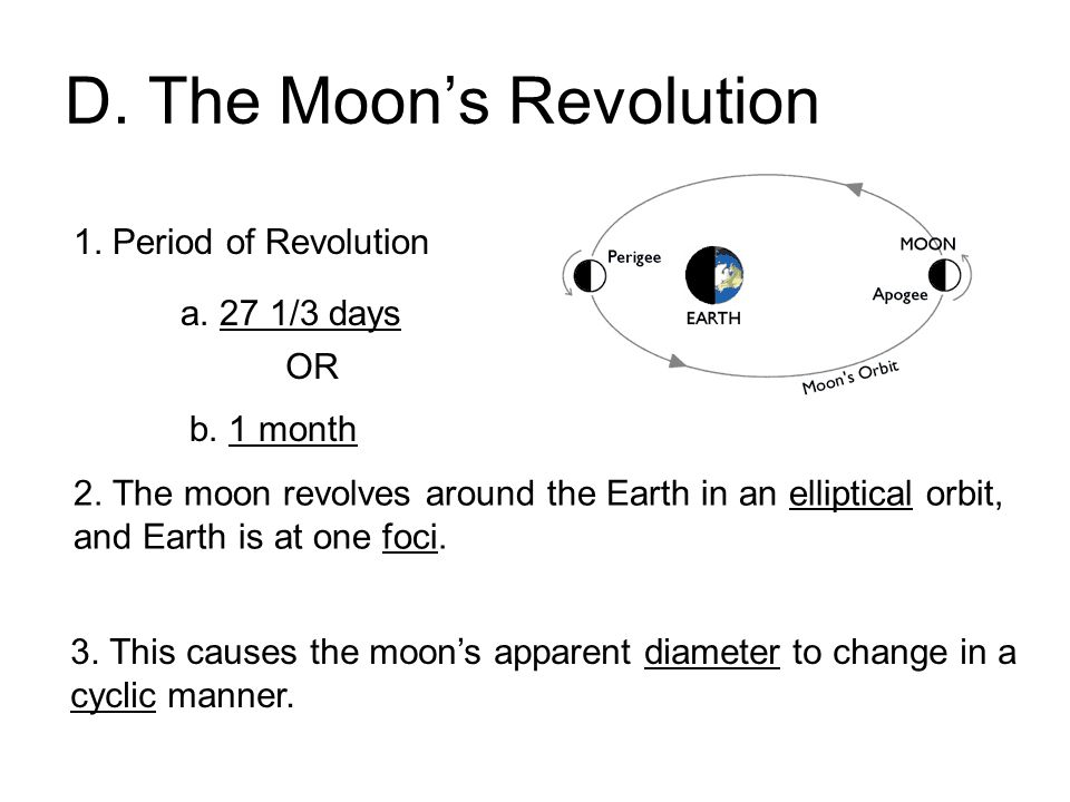 D. The Moon's Revolution