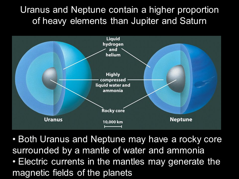 Uranus and Neptune contain a higher proportion of heavy elements than Jupiter and Saturn