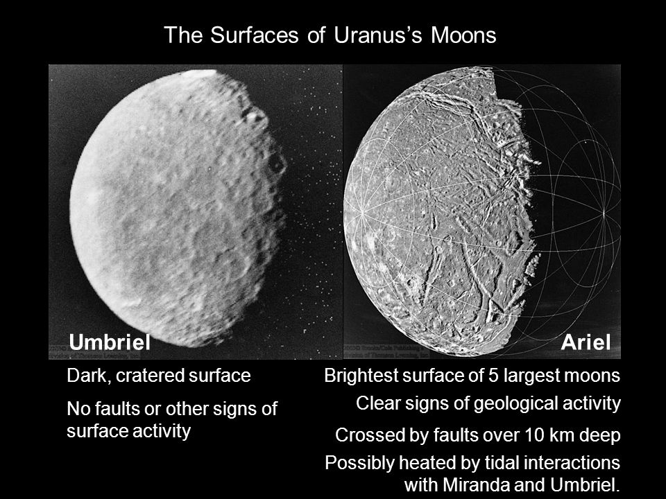 The Surfaces of Uranus's Moons