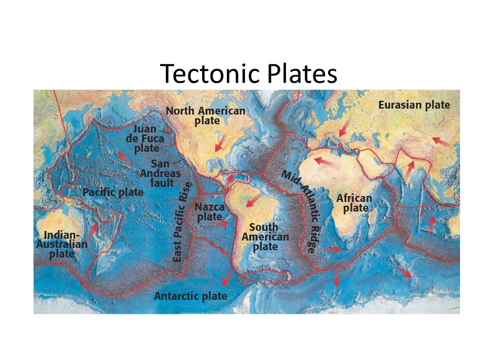 Chapter 21 Tectonic Plates