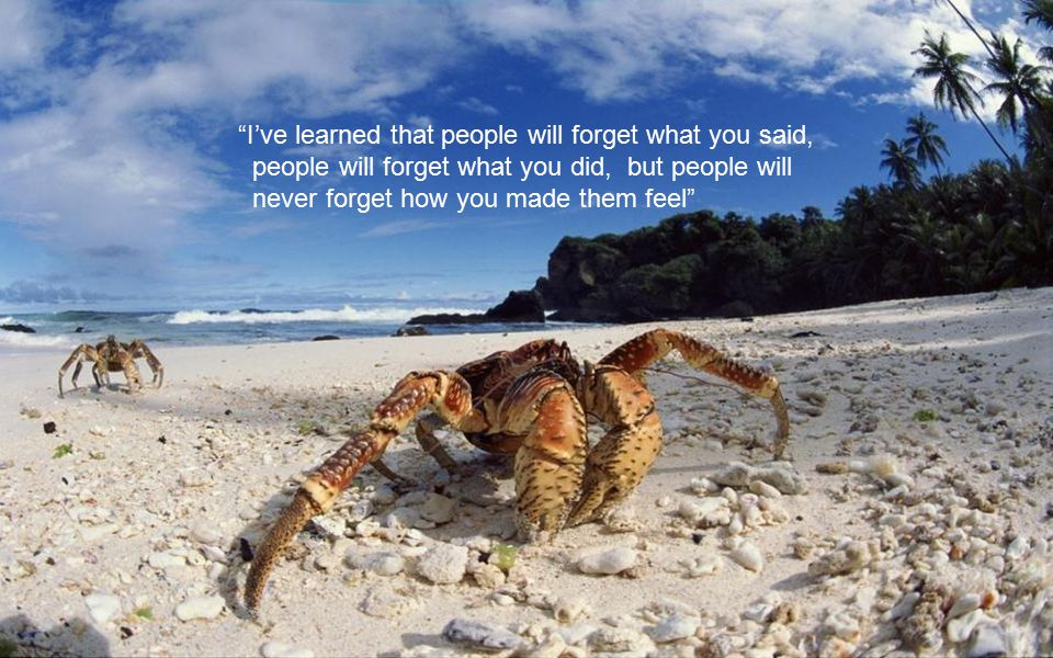 I've learned that people will forget what you said,