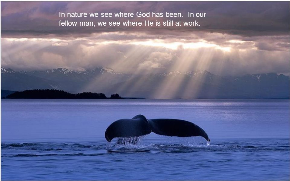 In nature we see where God has been