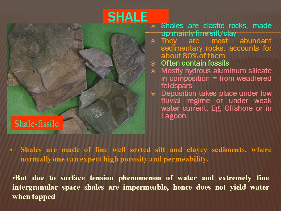 SHALE Shales are clastic rocks, made up mainly fine silt/clay. They are most abundant sedimentary rocks, accounts for about 80% of them.