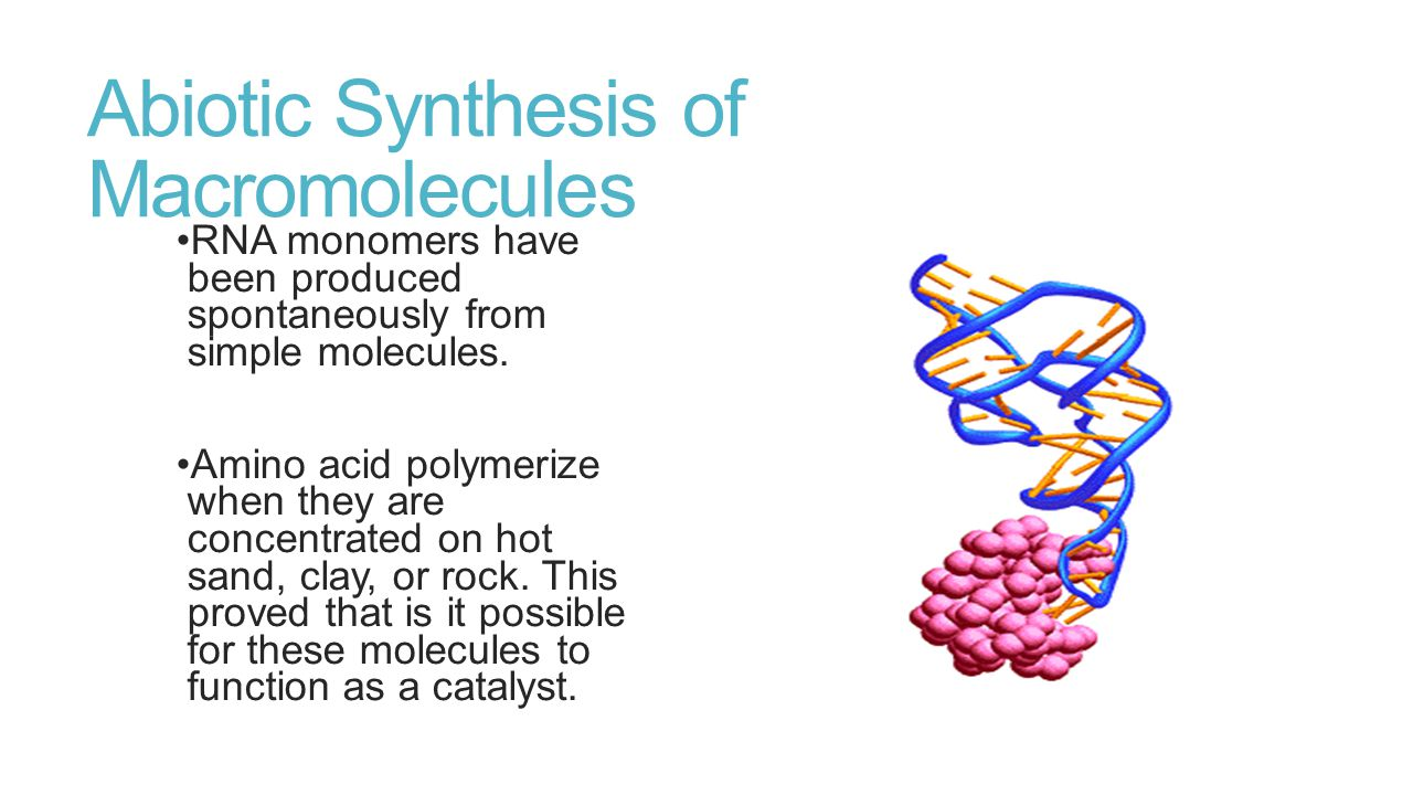 Abiotic Synthesis of Macromolecules