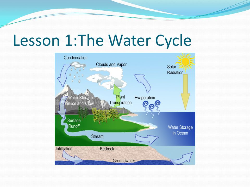 Lesson 1:The Water Cycle