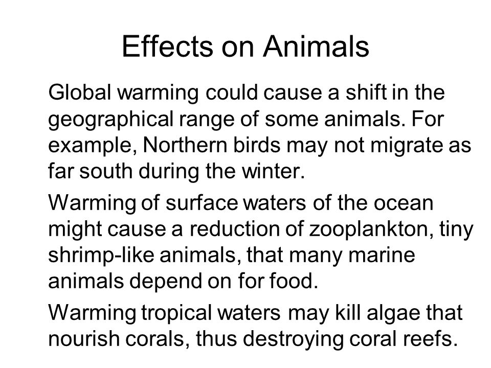 Effects on Animals