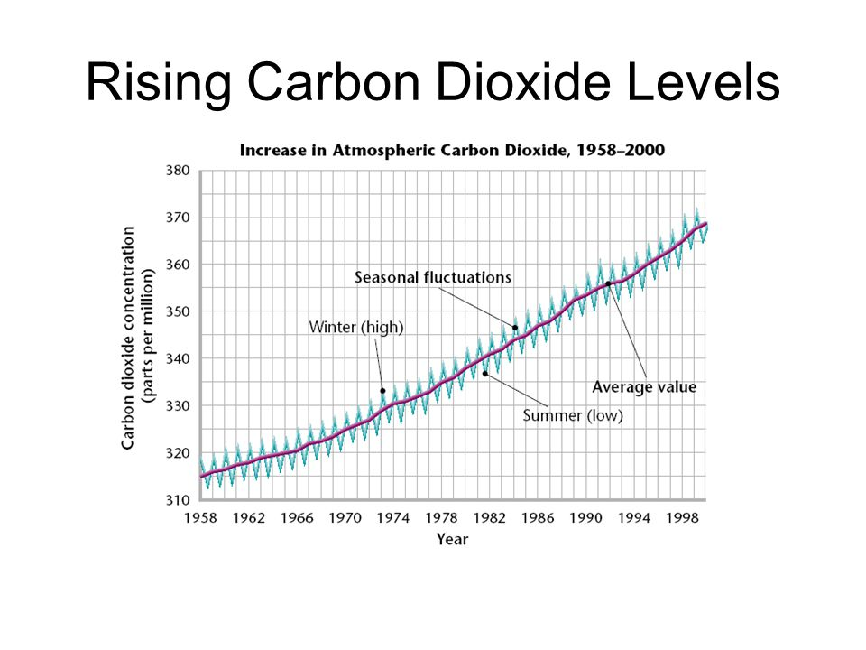 Rising Carbon Dioxide Levels