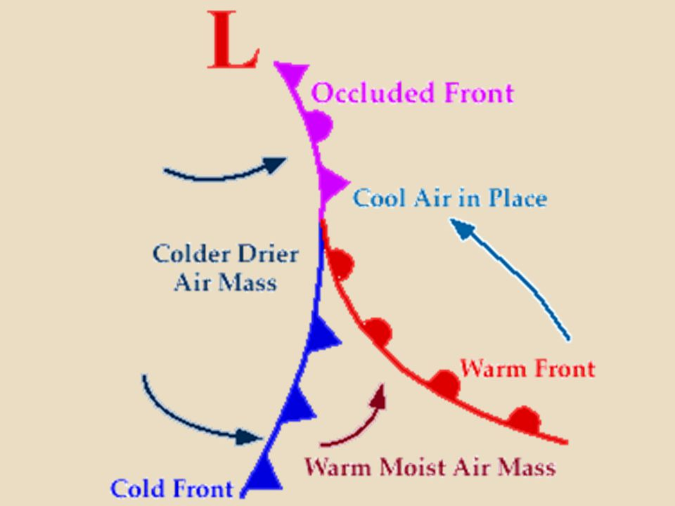 The air masses, in order from front to back, are cold, warm, and then cold again. The boundary line, where the two fronts meet, curves towards the pole because of the Coriolis Effect.