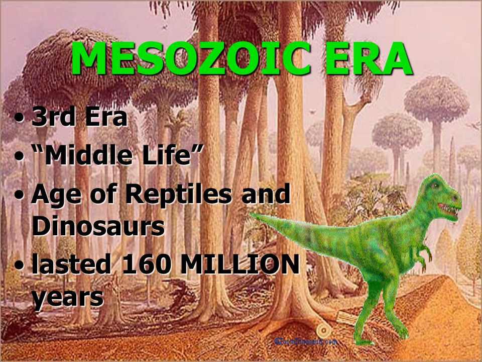 MESOZOIC ERA 3rd Era Middle Life Age of Reptiles and Dinosaurs