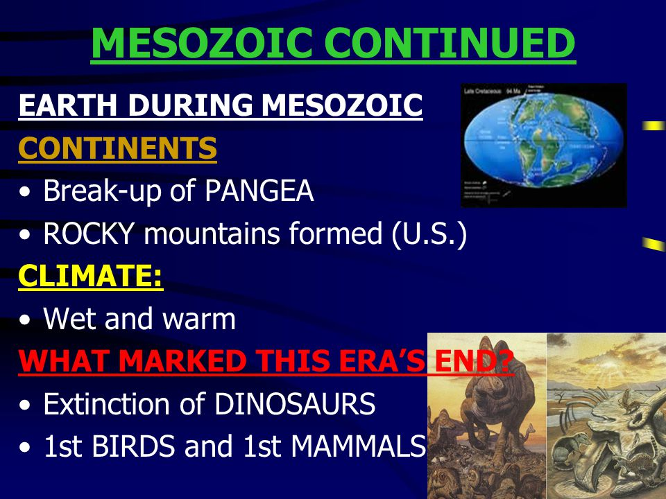 MESOZOIC CONTINUED EARTH DURING MESOZOIC CONTINENTS Break-up of PANGEA
