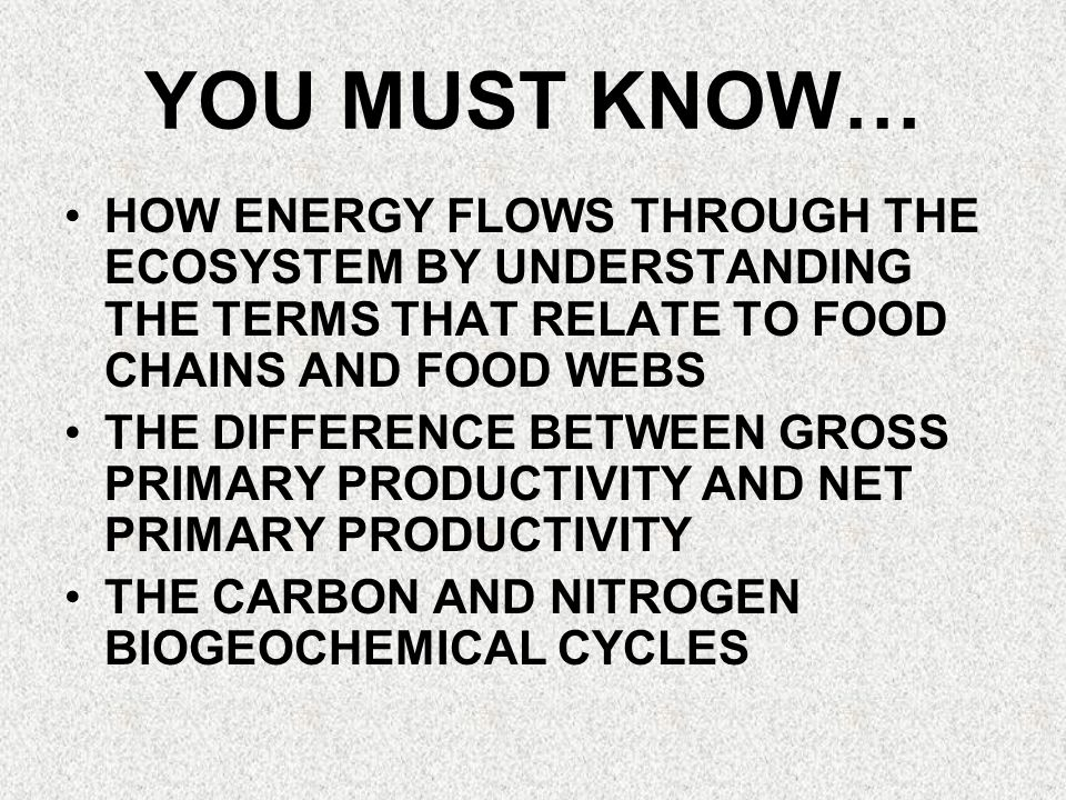 YOU MUST KNOW… HOW ENERGY FLOWS THROUGH THE ECOSYSTEM BY UNDERSTANDING THE TERMS THAT RELATE TO FOOD CHAINS AND FOOD WEBS.