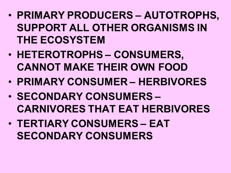 PRIMARY PRODUCERS – AUTOTROPHS, SUPPORT ALL OTHER ORGANISMS IN THE ECOSYSTEM