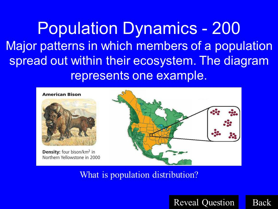 What is population distribution