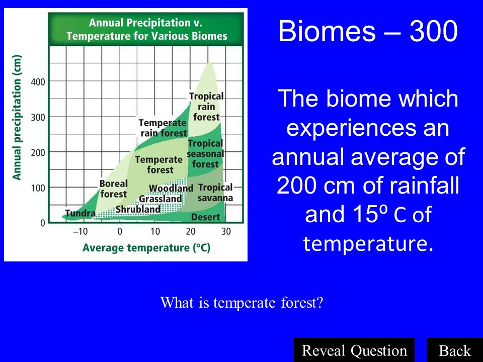 What is temperate forest