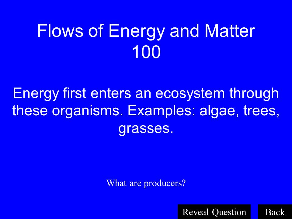 Flows of Energy and Matter 100 Energy first enters an ecosystem through these organisms. Examples: algae, trees, grasses.