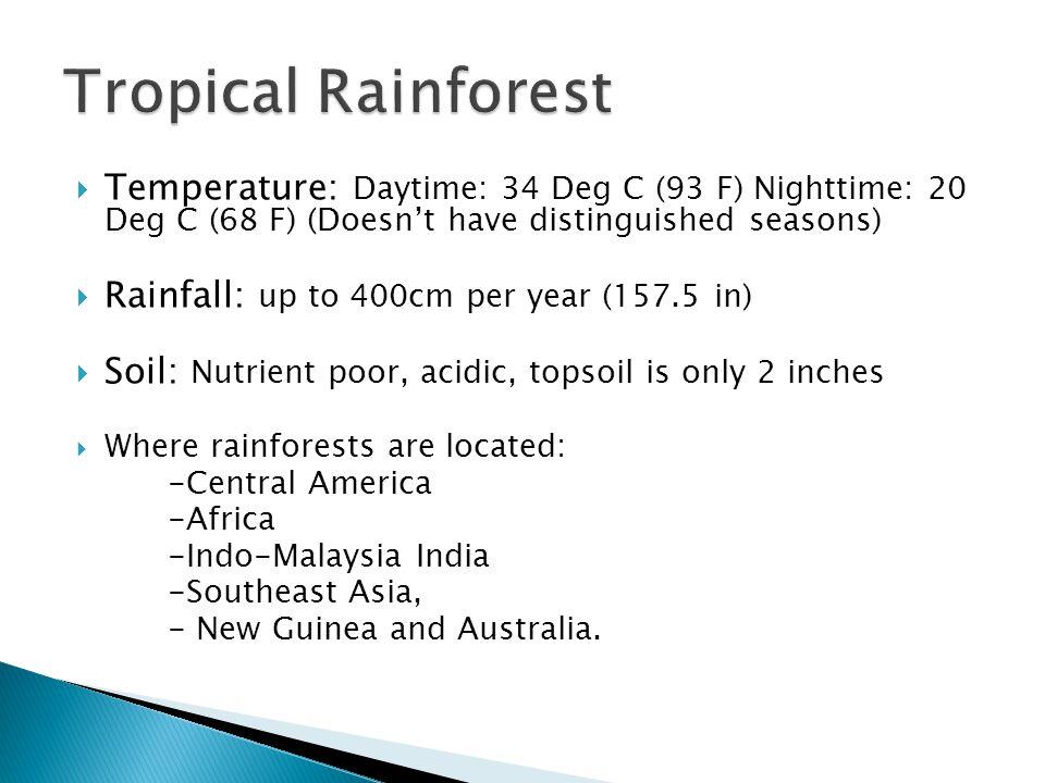 Tropical Rainforest Temperature: Daytime: 34 Deg C (93 F) Nighttime: 20 Deg C (68 F) (Doesn't have distinguished seasons)