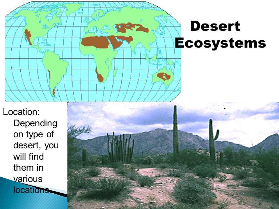 Desert Ecosystems Location: Depending on type of desert, you will find them in various locations.