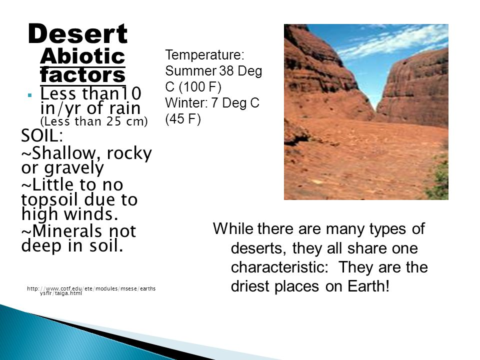Desert Abiotic factors