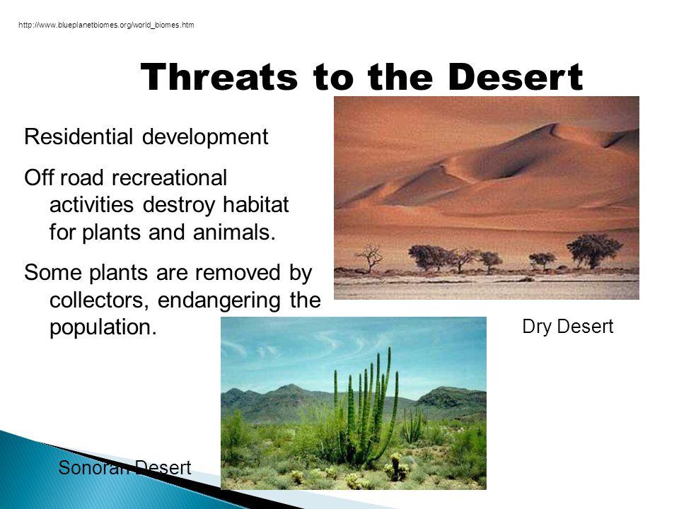Threats to the Desert Residential development